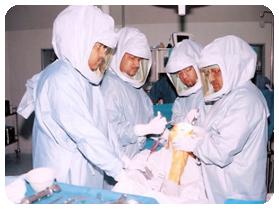 Dr Shekhar Agarwal Team